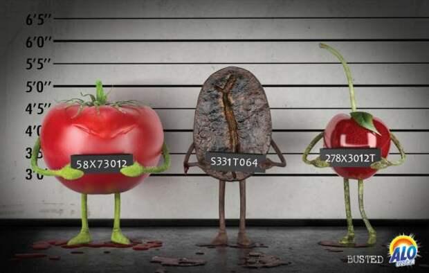 Busted, Alo Ultra, Leo Burnett / Istanbul, Печатная реклама