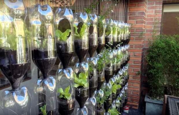 Вертикальная грядка из пластиковых бутылок