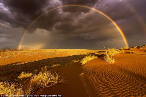 Дождь в пустыне