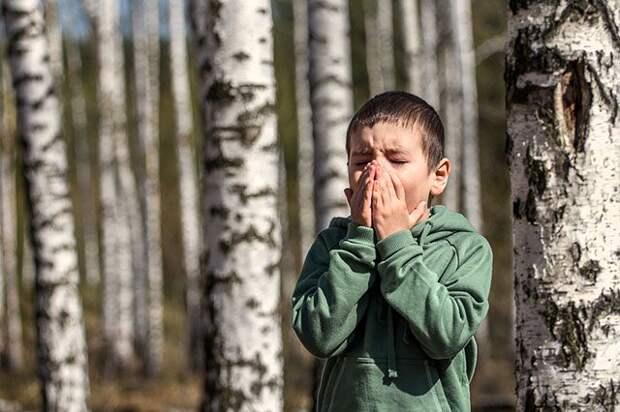 6 способов защититься от сезонной аллергии