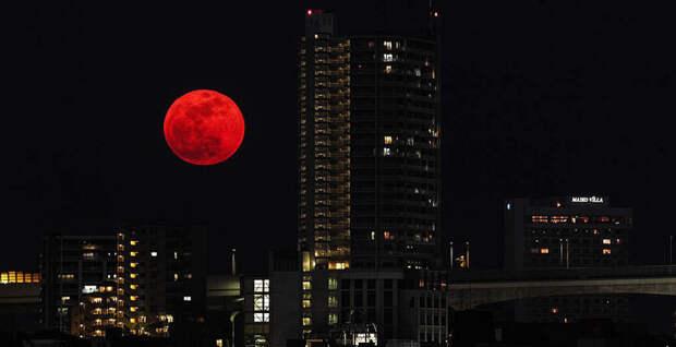 Не пропустите: в эту ночь взойдет «кровавая» супер-Луна!