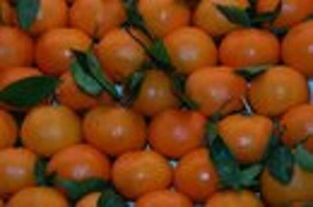 10 овощей и фруктов с отрицательной калорийностью