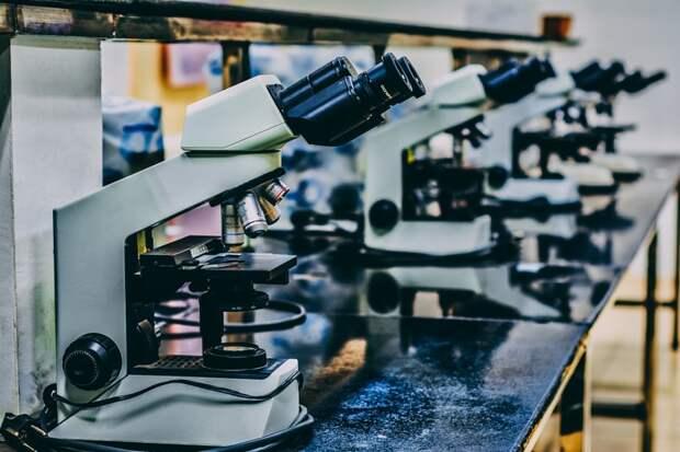 Школа на Сельскохозяйственной закупила  оборудование для научной лаборатории