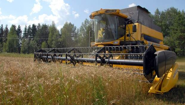 Фермерское движение Подмосковья подключится к созданию экологически чистой продукции
