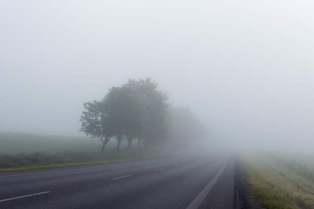 Туман ожидается в Удмуртии в ночь на воскресенье