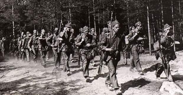 Фальшивый нейтралитет: Швеция воевала против СССР вместе с Гитлером и «лесными братьями»