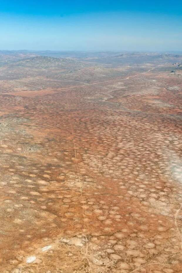 Учёные смогли разгадать тайну появления «волшебных» кругов в африканской пустыне