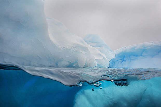 Мир под и надо льдом