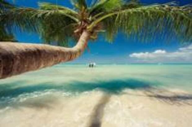Погода в Доминикане - выбираем ту, которая нравится!