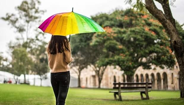 Небольшой дождь и до плюс 13 градусов ожидается в Подольске в субботу