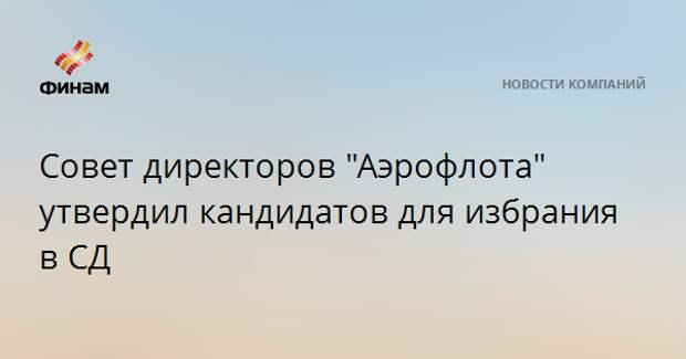 """Совет директоров """"Аэрофлота"""" утвердил кандидатов для избрания в СД"""