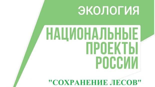 Минприроды Крыма продолжает реализацию регионального проекта «Сохранение лесов»