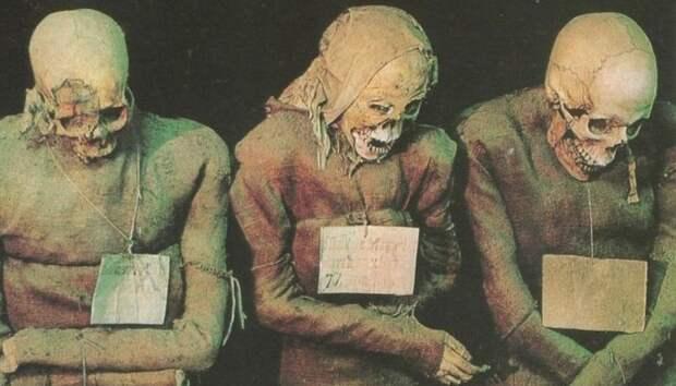 Коллекция из более чем 8000 тел, мумифицированных естественным образом.