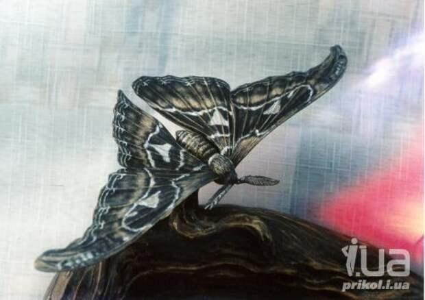 Искусство резьбы по дереву. Творения Мурада Кардашева