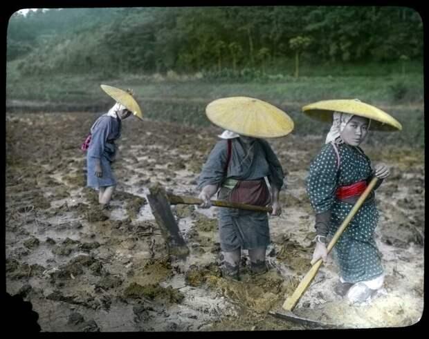 1910 год: Идиллические раскрашенные фотографии Японии периода окончания эпохи Мэйдзи