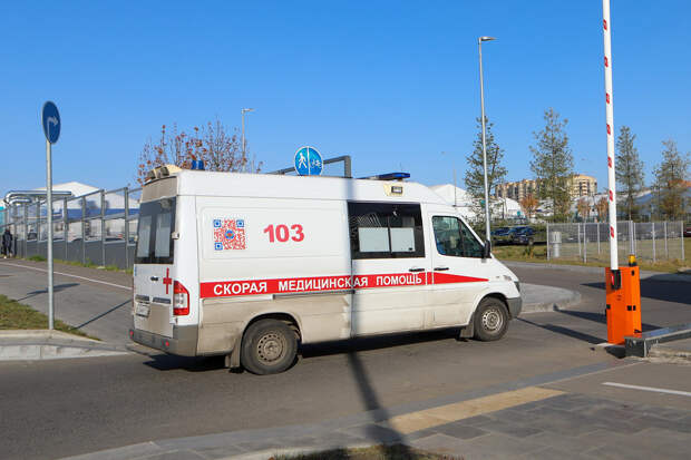 Изрезанного матерью подростка госпитализировали в Москве