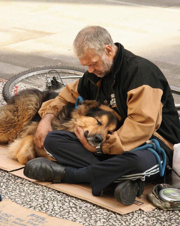 11. Бездомный с собакой  бездомный, любовь, собака