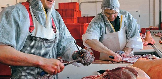 Россия намерена отказаться от импорта мяса