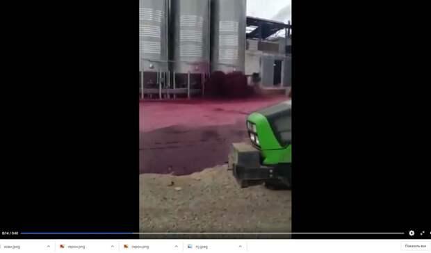 Видео дня: винная река прокатилась по испанскому заводу