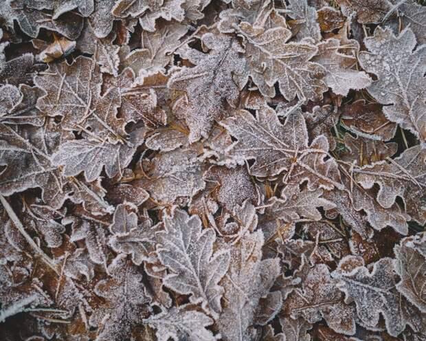 Как зима влияет на здоровье и что с этим делать
