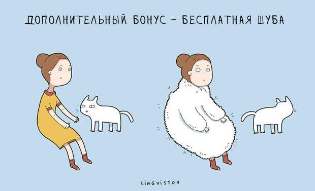 11 причин в картинках держать дома котика. Или кошечку. Или сорок