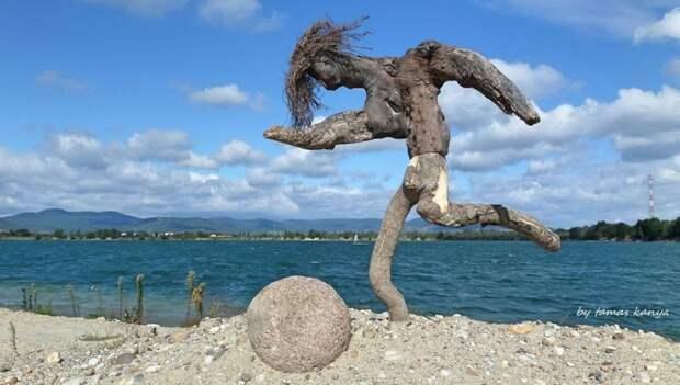 Скульптуры из коряг, выброшенных на берег венгрия, коряга, скульптура