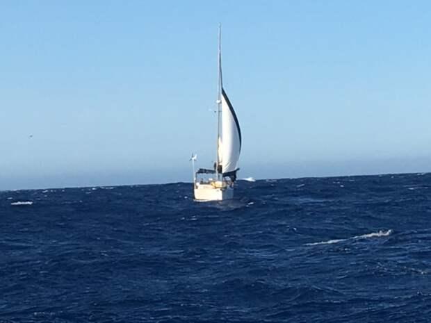 Брат Арне отправил с яхты сигнала бедствия джинсы, истории, море, новая зеландия, спасательный жилет, спасение, турист, яхта