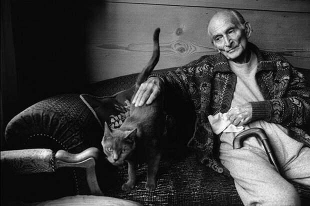 Знаменитые художники и их коты