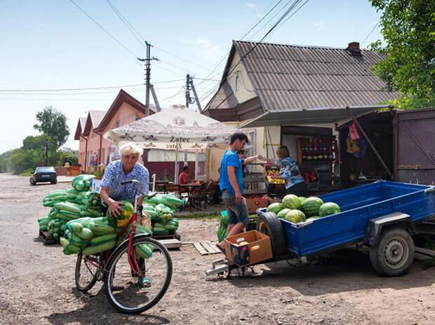 Как складывается быт граждан Украины, Белоруссии, Киргизии и Казахстана