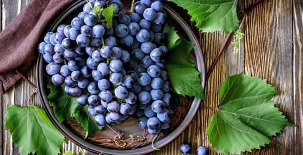 Урожай винограда