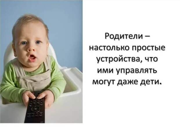 В Государственной Думе начали проводить по три дезинфекции в день. Но паразиты по-прежнему приходят на заседания
