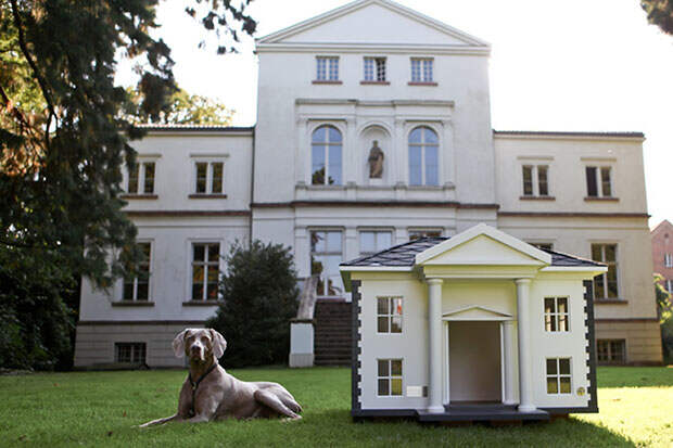 LUXURIOUS-DOG-MANSIONS