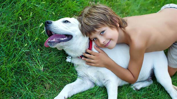 Как помочь ребенку не бояться собак