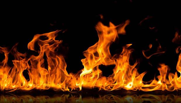 Корова и курицы сгорели в страшном пожаре в Карелии