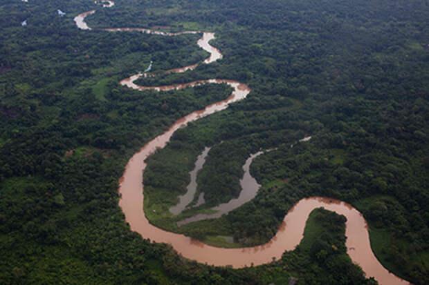 Следы неизвестной цивилизации обнаружили в джунглях Гондураса