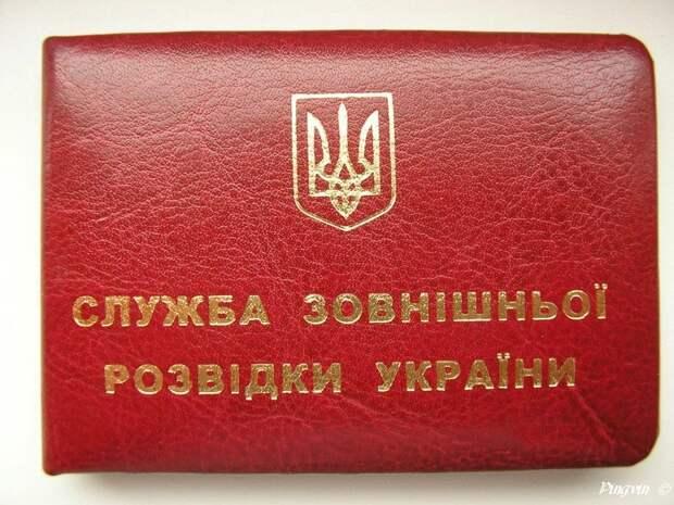 Разведка Украины узнала о «переброске» в Сирию Якубовича и Бабкиной
