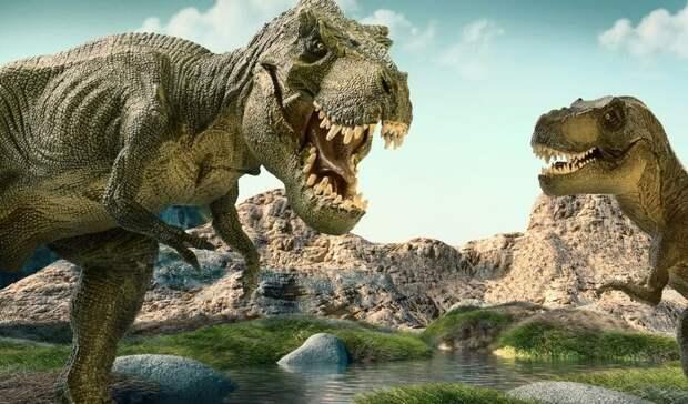 2,5 миллиарда: палеобиологи пересчитали всех тираннозавров, ходивших по Земле