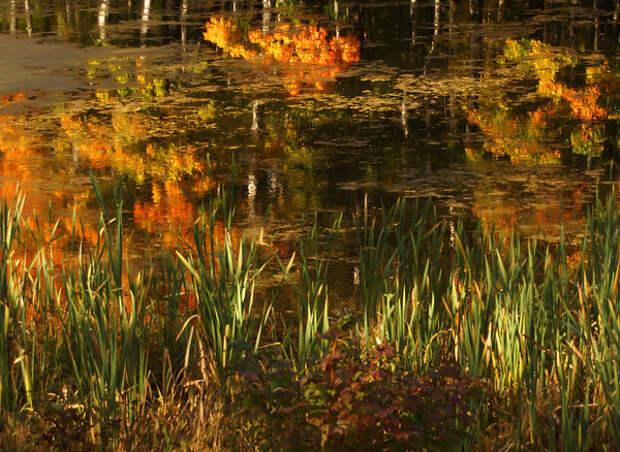 Конец сентября:  праздники, приметы  и традиции на Руси