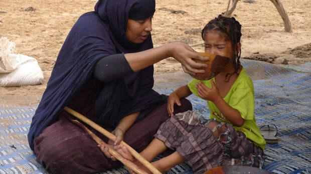 Мавританская ферма по откорму невест