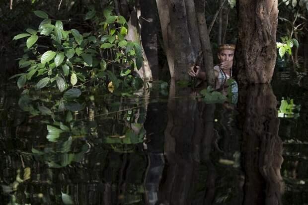 Жизнь племен в бассейне реки Амазонки