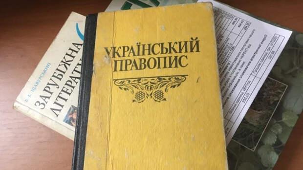 Министр культуры Украины призвал «ласково» продвигать родной язык