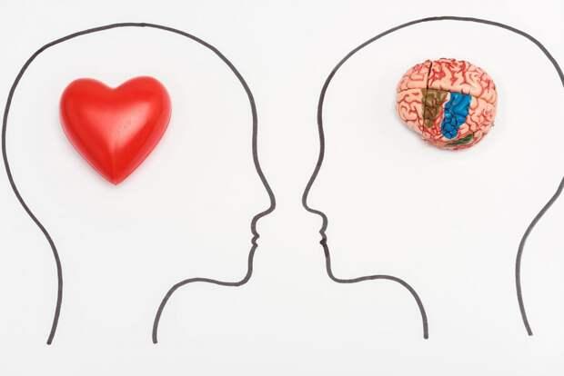 30 удивительных фактов о мозге и мышлении, которые заставляют призадуматься