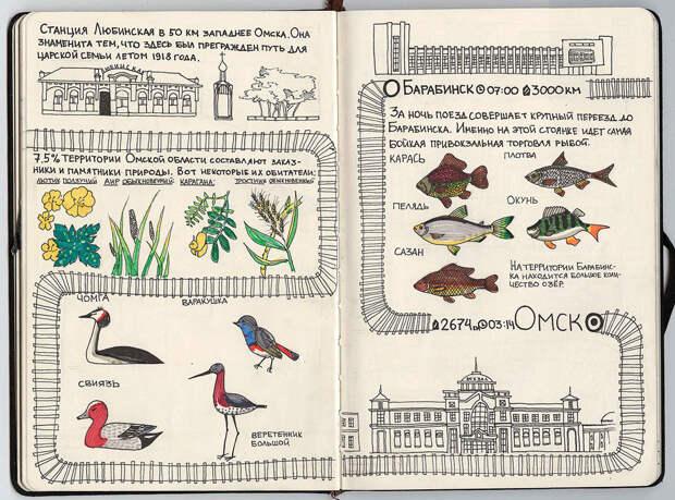 Любинская - Омск - Барабинск путешествие, рисунки