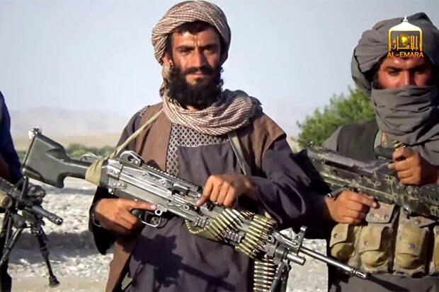 Талибы объяснили, чем они отличаются от свидомых украинцев
