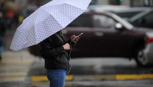 Небольшой дождь и до +11 градусов ожидается в четверг в Подольске
