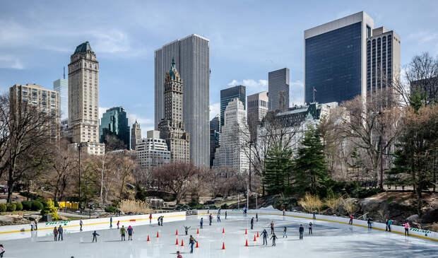США. Нью-Йорк. Центральный парк. (Maciek Lulko)