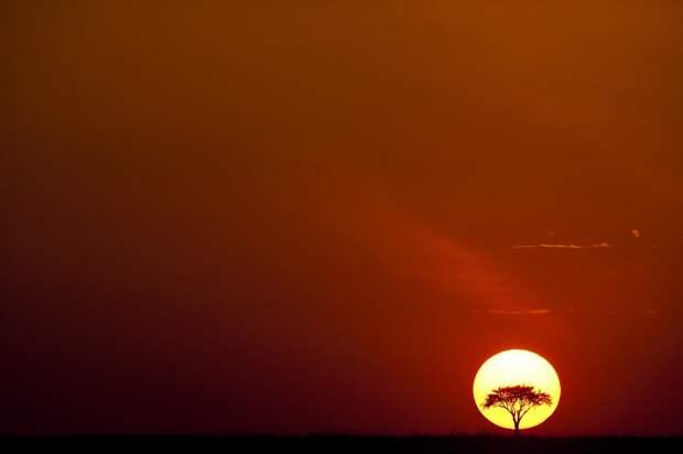 afrikanskie zakaty 1 Потрясающие африканские закаты от Пола Гольдштейна