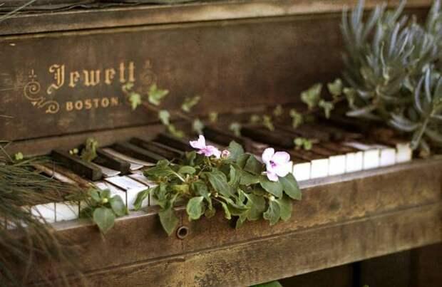 Фортепиано. Для вас будет играть Сати в арт-кафе Море внутри…
