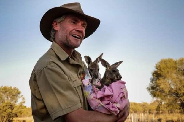 Один поступок изменил его жизнь: мужчина спас малыша кенгуру и стал телеведущим