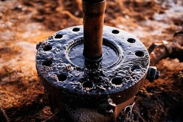 Четырех человек арестовали в Самаре по делу о «грязной нефти» в «Дружбе»